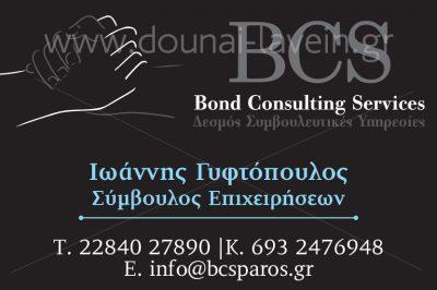 BCS – GYFTOPOULOS IOANNIS
