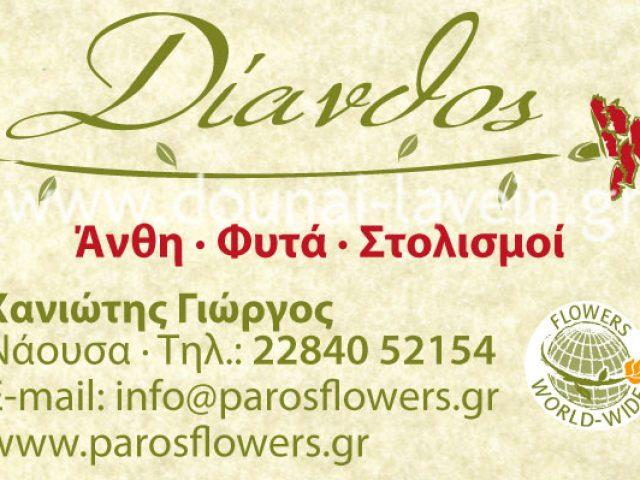 DIANTHOS – CHANIOTIS GEORGE