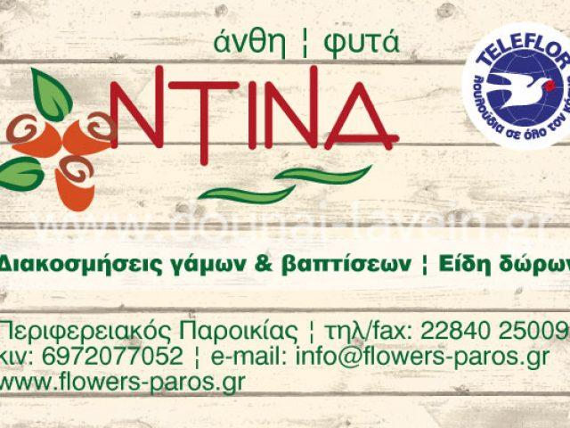 ΝΤΙΝΑ – ΡΟΥΣΣΟΥ ΚΩΝΣΤΑΝΤΙΝΑ