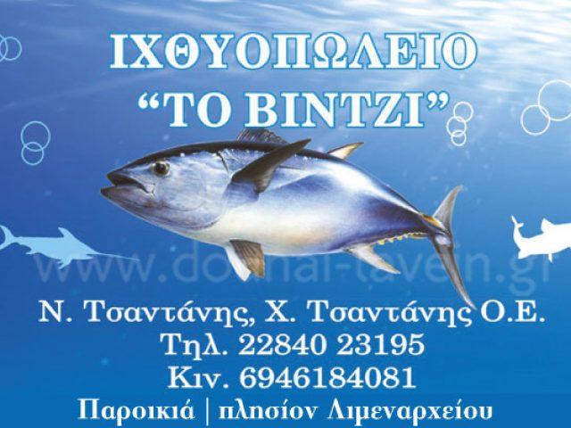 ΒΙΝΤΖΙ – ΤΣΑΝΤΑΝΗΣ ΝΙΚΟΛΑΟΣ & ΧΑΡΑΛΑΜΠΟΣ