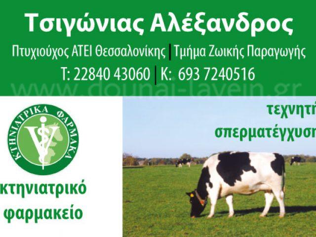 TSIGONIAS ALEXANDROS